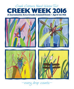 Creek Week 2015_Tshirt_ver4_sponsors1.2 copy